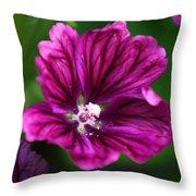 Purple Hollyhock Throw Pillow