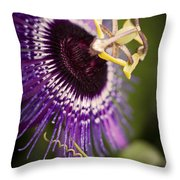 Purple Passion Flower Throw Pillow