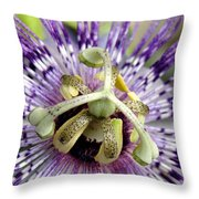 Purple Passion Flower Close Up  Throw Pillow