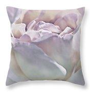 Purple Passion Pastel Rose Flower Throw Pillow