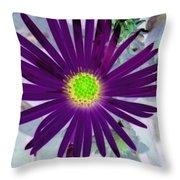 Purple Passion - Photopower 1605 Throw Pillow