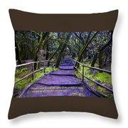 Purple Path Through The Valley Throw Pillow