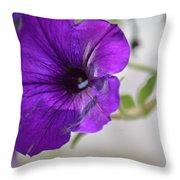 Purple Petunia 2013 Throw Pillow