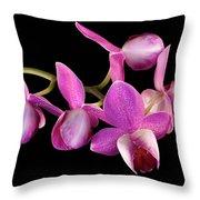 Purple Phal Throw Pillow
