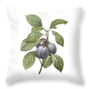 Purple Plum Throw Pillow