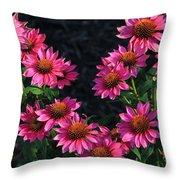 Purple Pow Echinacea  Throw Pillow
