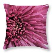 Purple Pow Throw Pillow