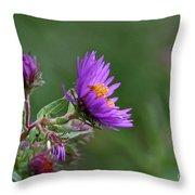 Purple Profiles Throw Pillow