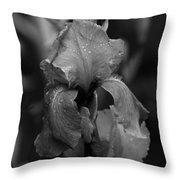 Purple Rain In Black And White Throw Pillow