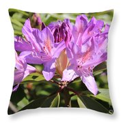 Purple Rhododendron Throw Pillow