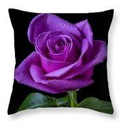 Purple Rose Throw Pillow