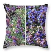 Purple Sage Collage Throw Pillow