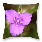 Purple Spiderwort Wildflower Throw Pillow