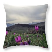 Purple Spring In The Big Horns Throw Pillow