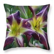 Purple Stargazers Throw Pillow