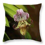 Purple Striped Phap Throw Pillow