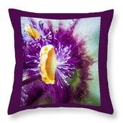 Purple Surprise Throw Pillow
