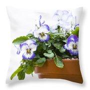 Purple Swirl Violas Throw Pillow