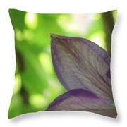 Purple Throw Pillow by Thomas Leon