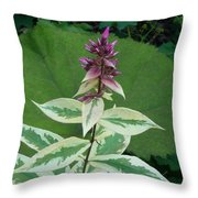 Purple Tipped Flower Throw Pillow