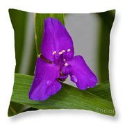 Purple Triangle Throw Pillow