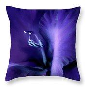 Purple Velvet Gladiolus Flower Throw Pillow by Jennie Marie Schell