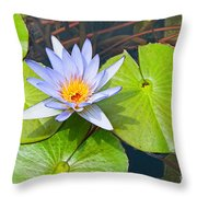 Purple Water Lily In Pond. Throw Pillow