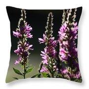 Purple Wild Flowers - 1 Throw Pillow