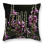 Purple Wild Flowers - 2 Throw Pillow