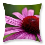 Purples And Reds Throw Pillow