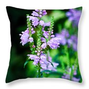 Purples Throw Pillow