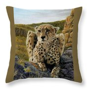 Purrfect View Throw Pillow
