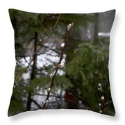 Pussy Willow In The Pines Throw Pillow