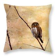 Pygmy Owl - The Watcher Throw Pillow