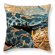 Pygmy Rattlesnake Throw Pillow