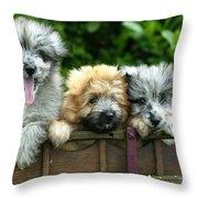 Pyrenean Sheepdogs Throw Pillow