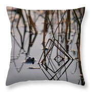 Pythagoras The Frog Throw Pillow