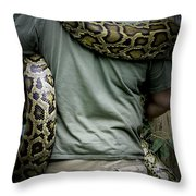 Python Boa Throw Pillow