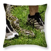 Python Snake In The Grass And Running Shoes Throw Pillow