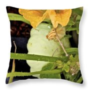 Qcpg 13-009 Throw Pillow