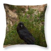 Qouth The Raven Nevermore Throw Pillow