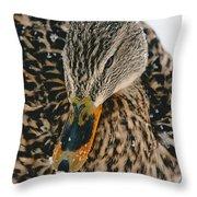 Quack Throw Pillow