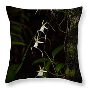 Quad Ghost Orchid Throw Pillow