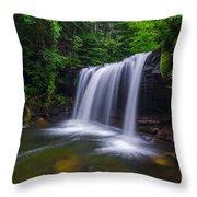 Quadrule Falls Summer Throw Pillow