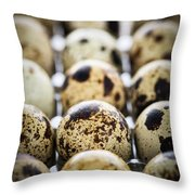 Quail Eggs Throw Pillow by Elena Elisseeva