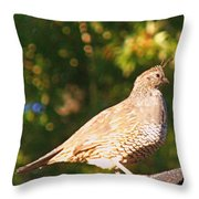 Quail Look Out Throw Pillow