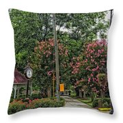 Quaint Park In Demopolis Alabama Throw Pillow