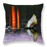 Quarry Lake Reflections Throw Pillow
