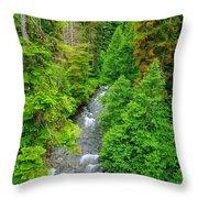 Quartz Creek Throw Pillow