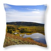 Quartz Lake Recreation Area Throw Pillow